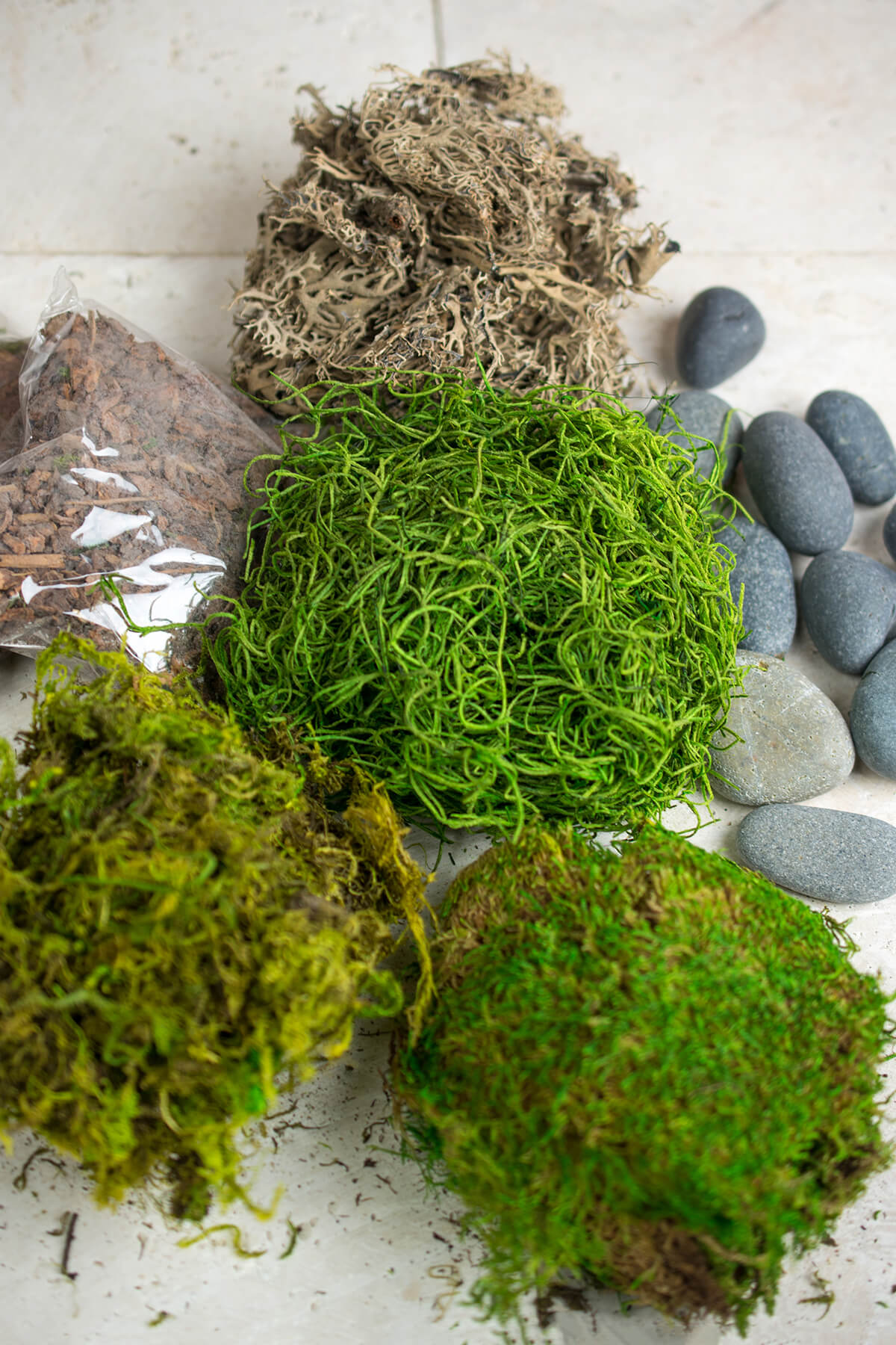 Terrarium Kit with Bark,Asst Mosses, Stones and Lichen