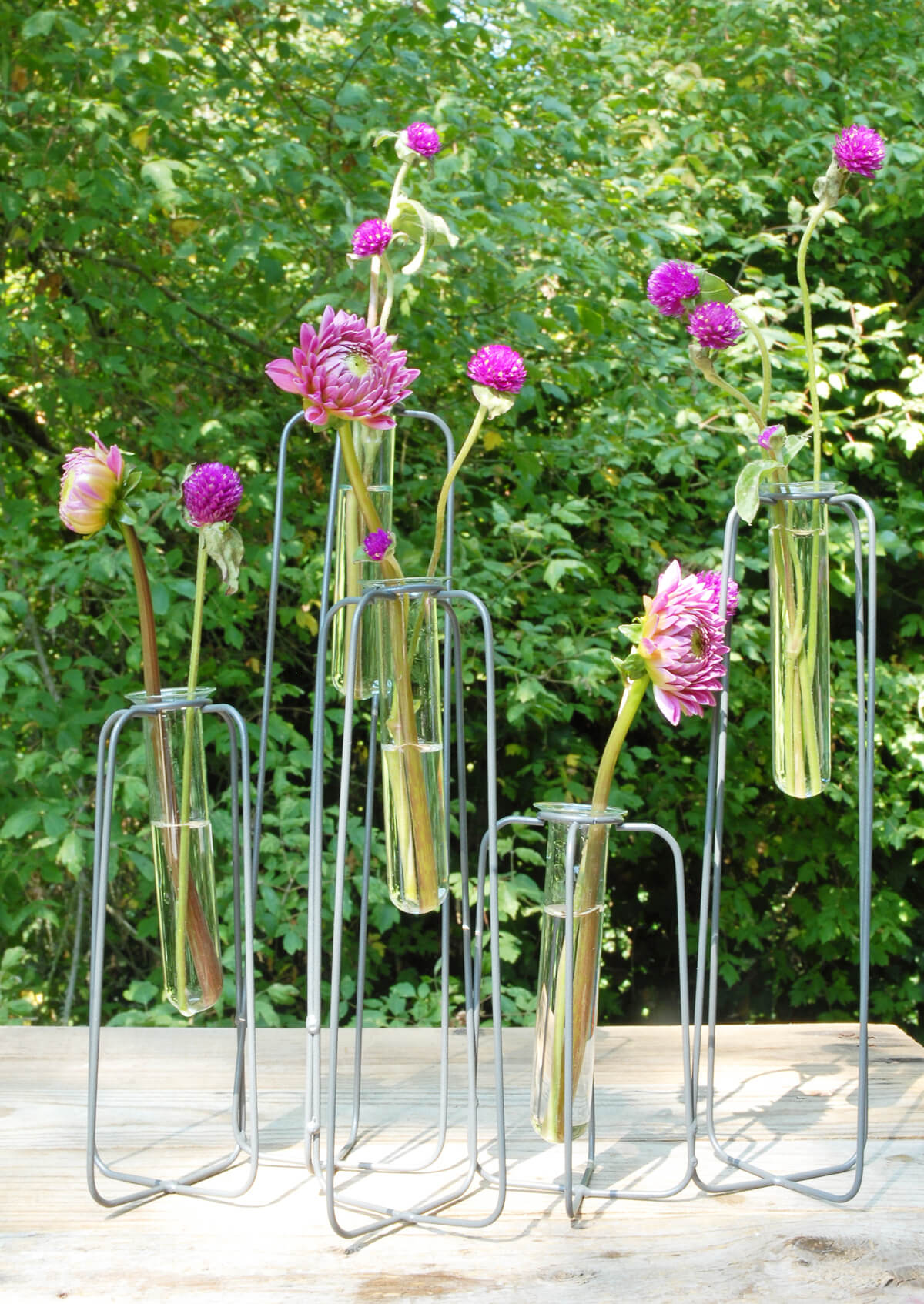 Test Tube Centerpiece  5 Tubes, Skyline Stand
