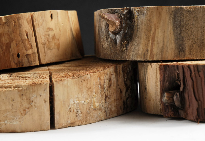 """Tree Slabs (SECONDS)  Round Thick Pine Natural Wood 6-8"""" wide"""