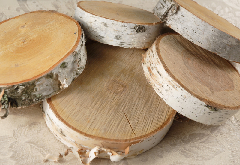 Birch Slab Tree Slices 5 10 Quot 2 Quot Thick