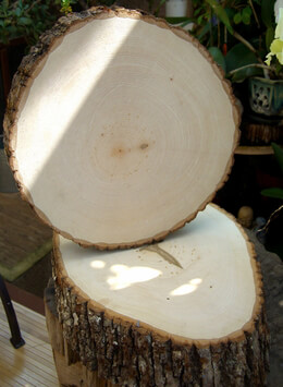 "Tree Slice - Large 9-12"" x 1"" thick"