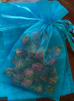 10 Organza Turquoise 4x6 Favor Bags