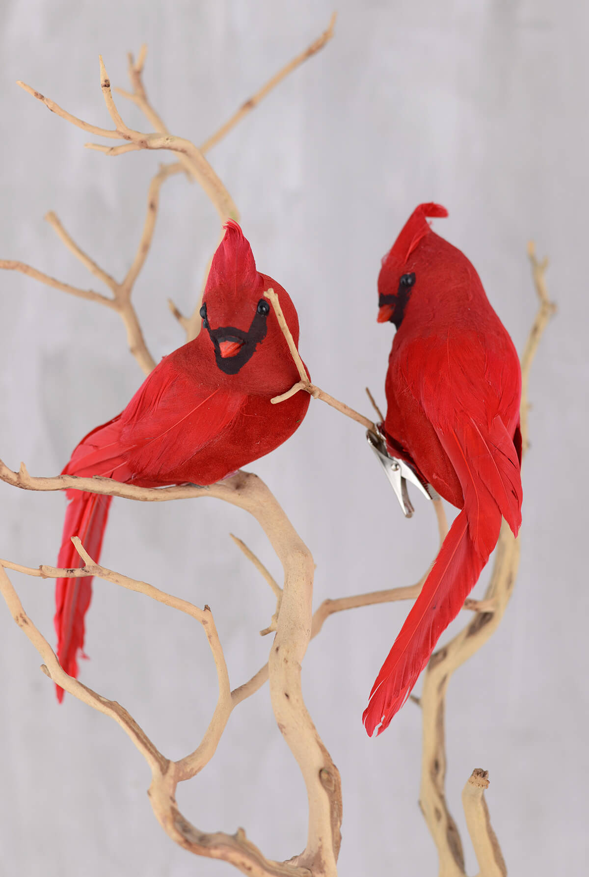 Cardinal With Clip 8in Pack Of 2