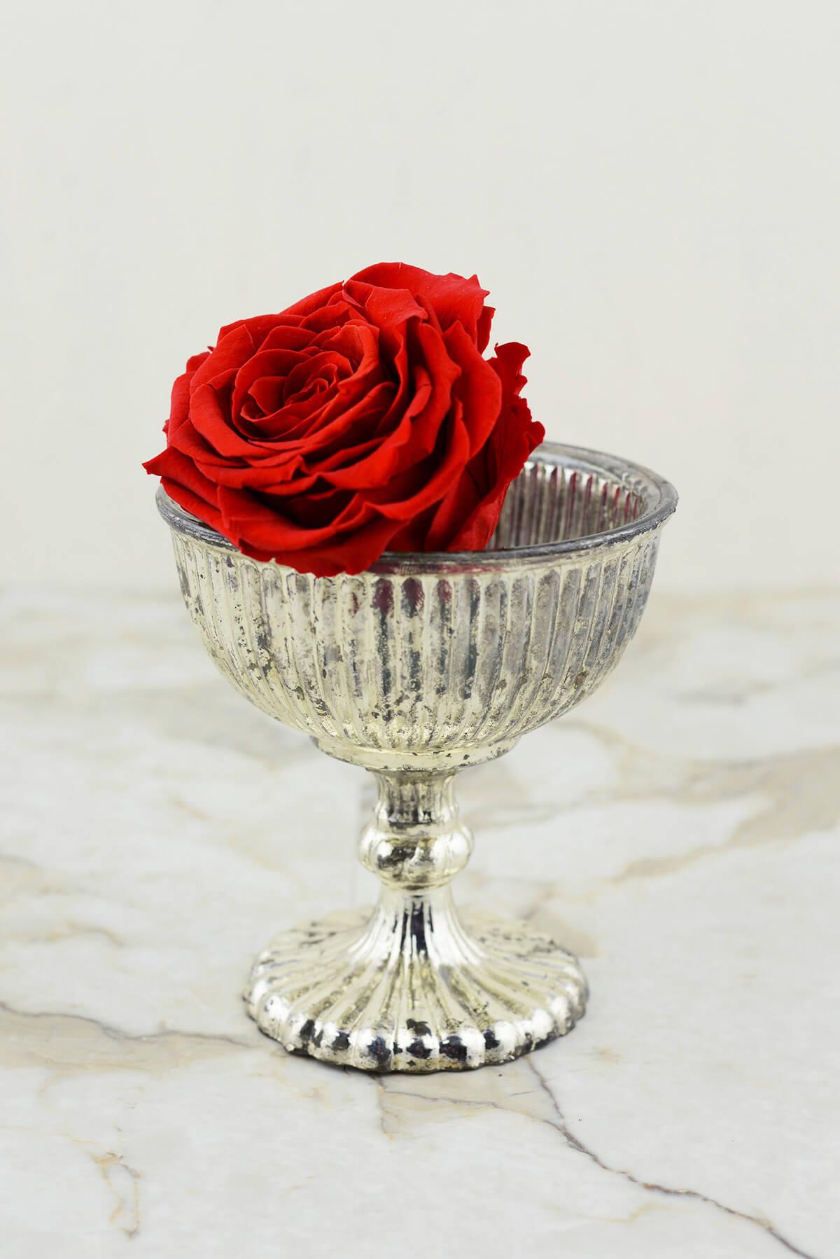 """Silver 5"""" Venice Compote Vases"""