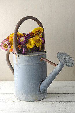Rustic Zinc Watering Can With Large Handle