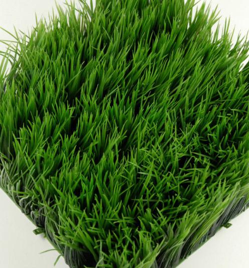 Wheat Grass Mats 10 5in Square Interlocking