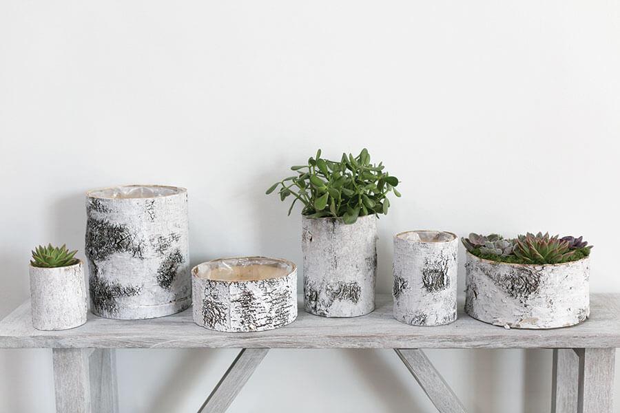 White Birch Bark Bowl Vase 10x4.7