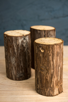 Natural Wood Branch 5.5in (3 pieces)