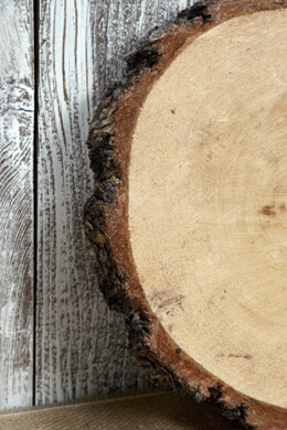"Tree Slabs Round Natural Wood 9-14"" and 2-2.5 Thick"