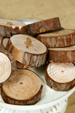 """12 Fir Tree Branch Rounds Slices 1.25"""" - 2.25""""  x  .5"""" thick"""