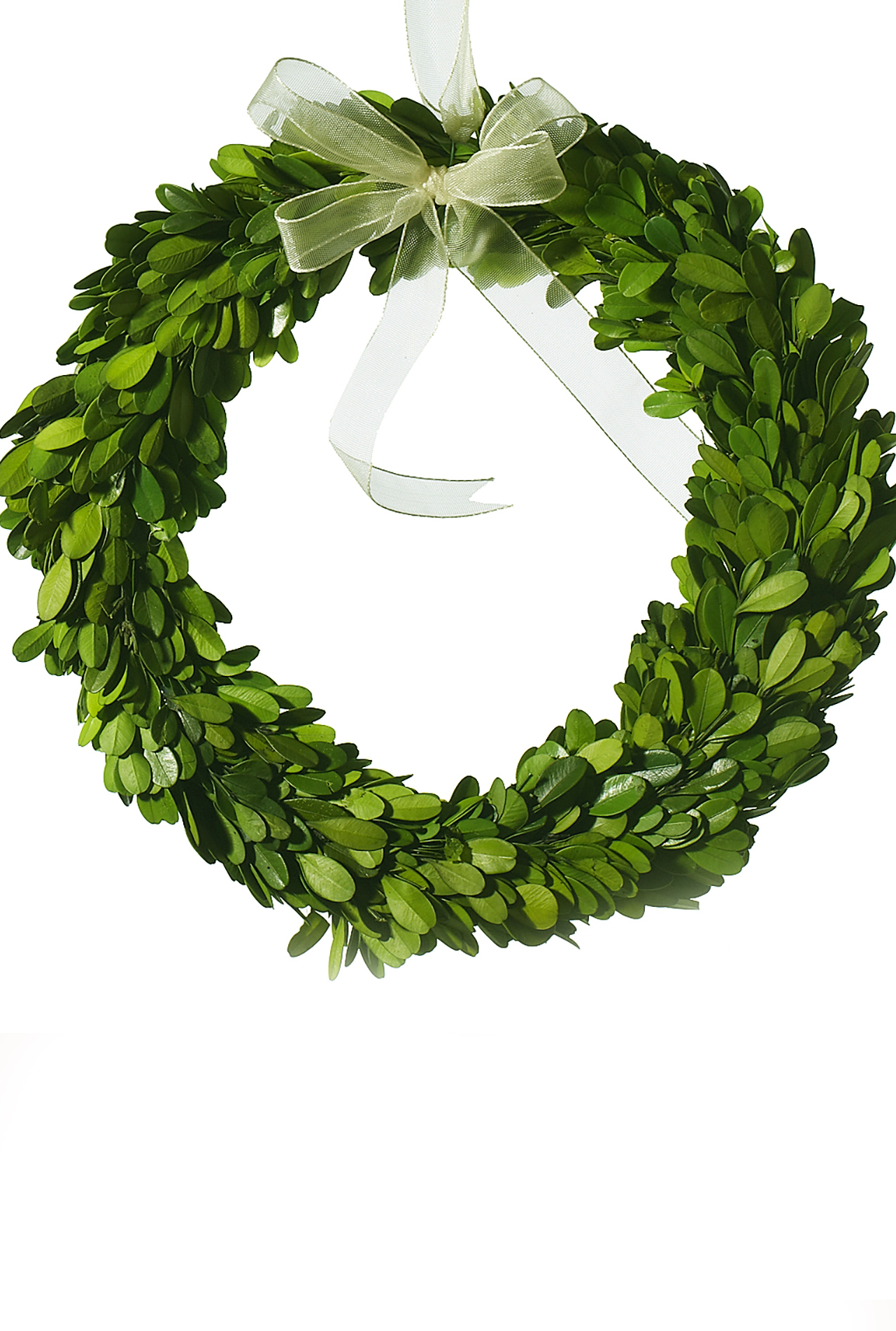 Boxwood Wreath Natural 10 Quot Round Preserved Boxwood