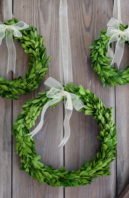 Preserved Boxwood Wreaths Set of 3, Round   7-9-10 inch