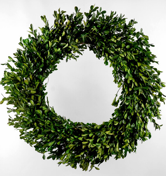 22 Quot Preserved Boxwood Wreath Green